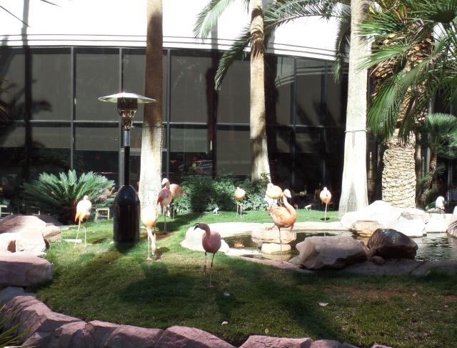 passeie pelos hoteis mais legais de las vegas flamingo